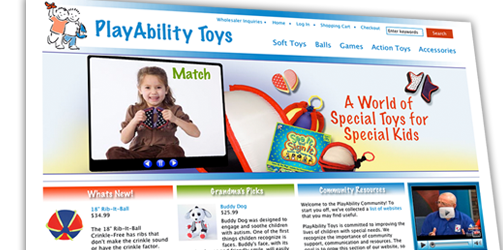 Playability Toys: Website